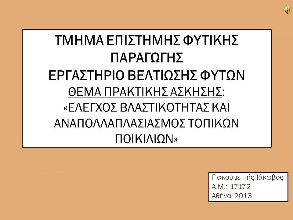 ΤΜΗΜΑ ΕΠΙΣΤΗΜΗΣ ΦΥΤΙΚΗΣ ΠΑΡΑΓΩΓΗΣ ΕΡΓΑΣΤΗΡΙΟ ΒΕΛΤΙΩΣΗΣ ΦΥΤΩΝ ΘΕΜΑ ΠΡΑΚΤΙΚΗΣ ΑΣΚΗΣΗΣ: «ΕΛΕΓΧΟΣ ΒΛΑΣΤΙΚΟΤΗΤΑΣ ΚΑΙ ΑΝΑΠΟΛΛΑΠΛΑΣΙΑΣΜΟΣ ΤΟΠΙΚΩΝ ΠΟΙΚΙΛΙΩΝ» Γιακουμεττής Ιάκωβος Α.Μ.: 17172 Αθήνα 2013