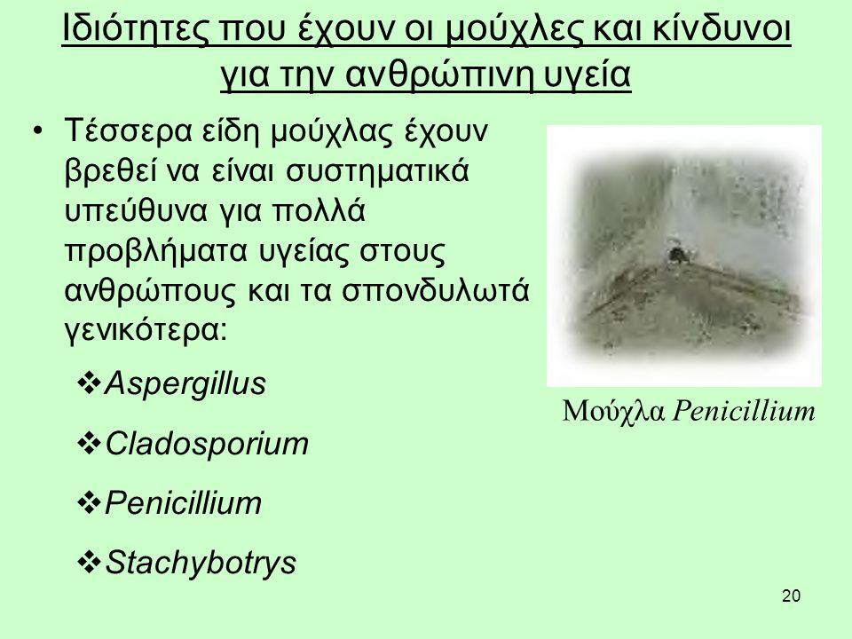 20 Ιδιότητες που έχουν οι μούχλες και κίνδυνοι για την ανθρώπινη υγεία Τέσσερα είδη μούχλας έχουν βρεθεί να είναι συστηματικά υπεύθυνα για πολλά προβλήματα υγείας στους ανθρώπους και τα σπονδυλωτά γενικότερα:  Aspergillus  Cladosporium  Penicillium  Stachybotrys Μούχλα Penicillium