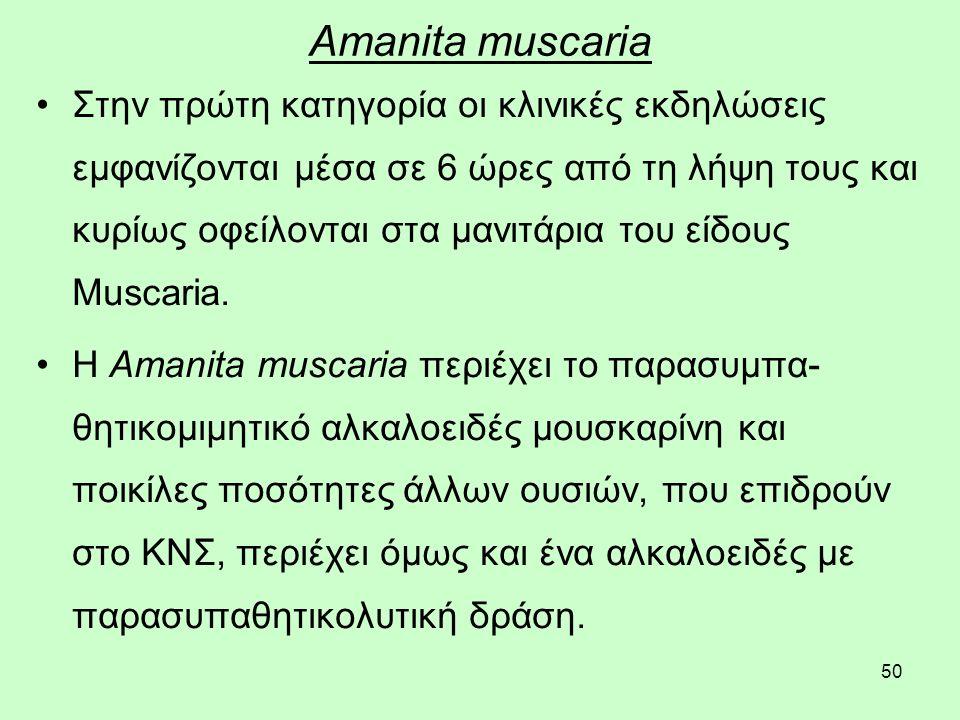 50 Amanita muscaria Στην πρώτη κατηγορία οι κλινικές εκδηλώσεις εμφανίζονται μέσα σε 6 ώρες από τη λήψη τους και κυρίως οφείλονται στα μανιτάρια του είδους Muscaria.