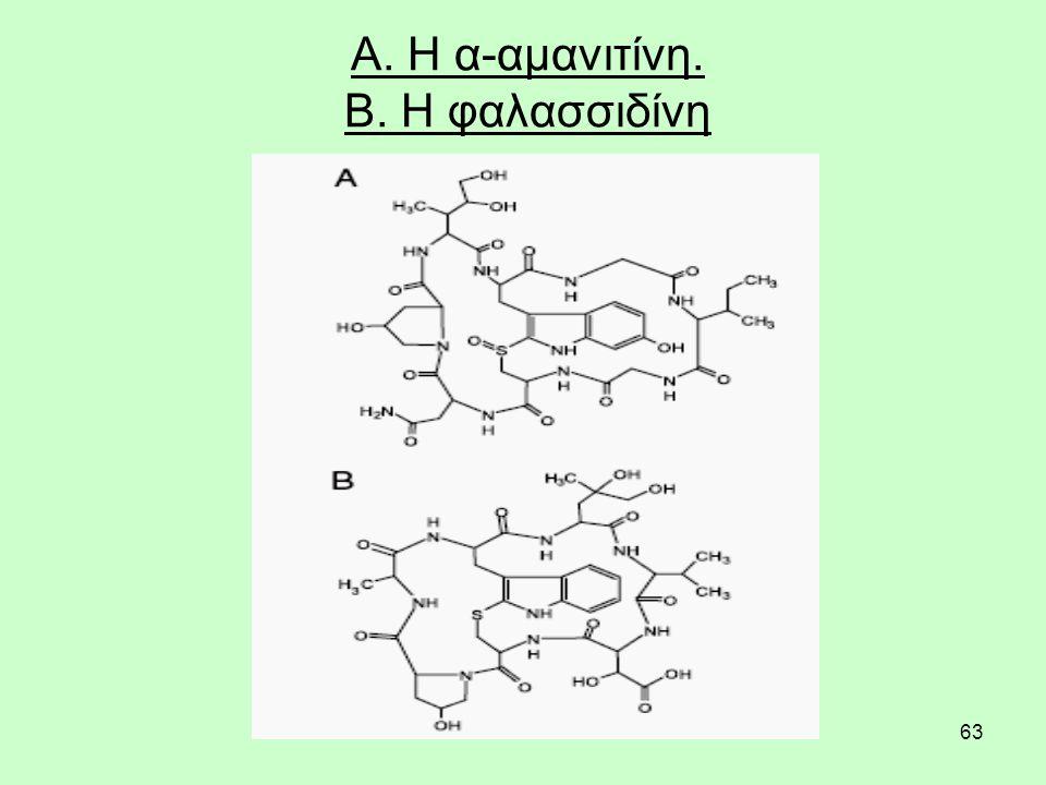 63 Α. Η α-αμανιτίνη. Β. Η φαλασσιδίνη