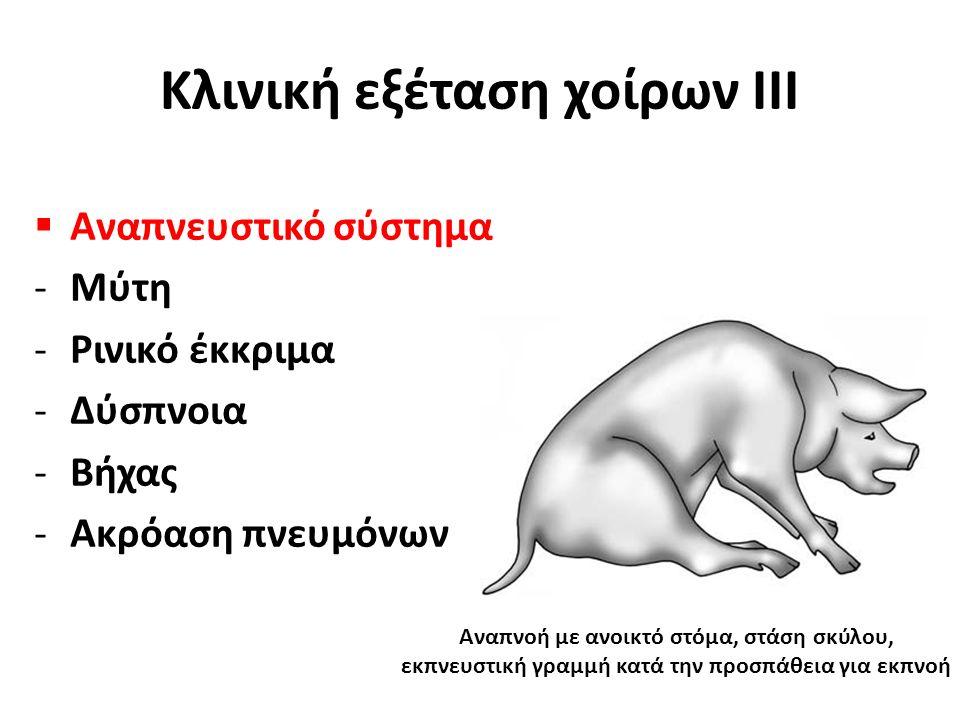  Αναπνευστικό σύστημα -Μύτη -Ρινικό έκκριμα -Δύσπνοια -Βήχας -Ακρόαση πνευμόνων Κλινική εξέταση χοίρων ΙΙΙ Αναπνοή με ανοικτό στόμα, στάση σκύλου, εκπνευστική γραμμή κατά την προσπάθεια για εκπνοή