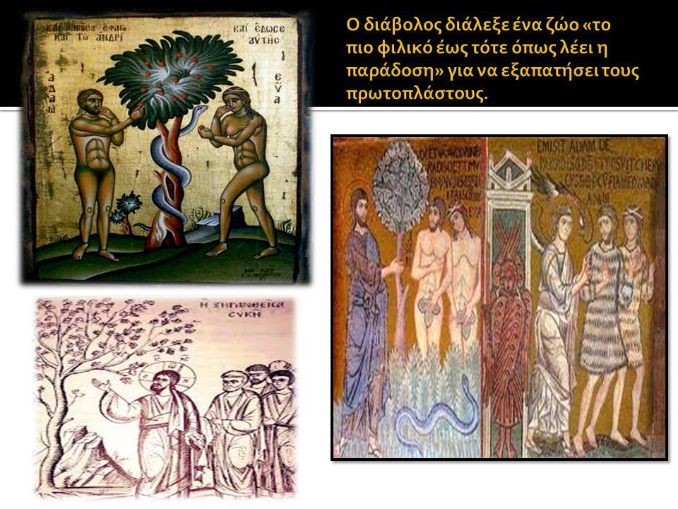  Άγιος Μόδεστος, ο προστάτης των ζώων  Μια γυναίκα χήρα και φτωχή, είχε πέντε ζεύγη βοδιών, ως μοναδικό πόρο για την συντήρησή της, που όμως τα βρήκε κακή και μεγάλη ασθένεια, και η γυναίκα λυπήθηκε θρηνώντας απαρηγόρητα, καταφεύγοντας στις Εκκλησίες και παρακαλώντας όλους τους Αγίους να την βοηθήσουν στην συμφορά της.