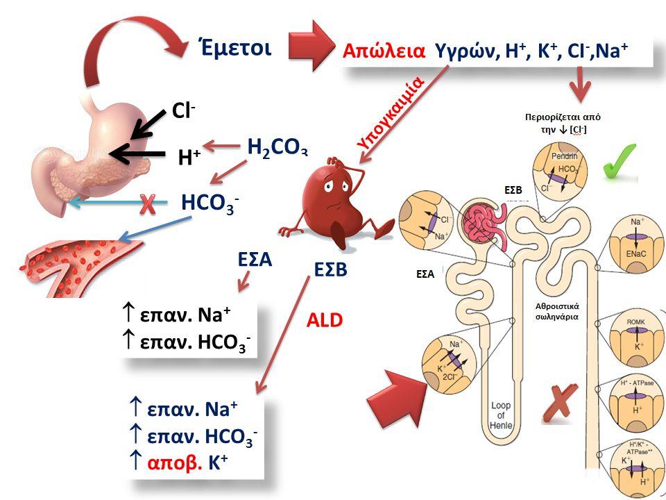 HCO 3 - Cl - H+H+ Έμετοι Απώλεια Υγρών, Η +, Κ +, CI -,Na + H 2 CO 3 ΕΣΑ EΣΒ  επαν.