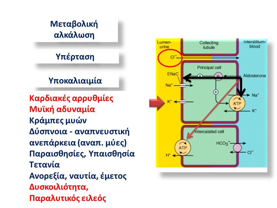 Μεταβολική αλκάλωση Υπέρταση Υποκαλιαιμία Καρδιακές αρρυθμίες Μυϊκή αδυναμία Κράμπες μυών Δύσπνοια - αναπνευστική ανεπάρκεια (αναπ.