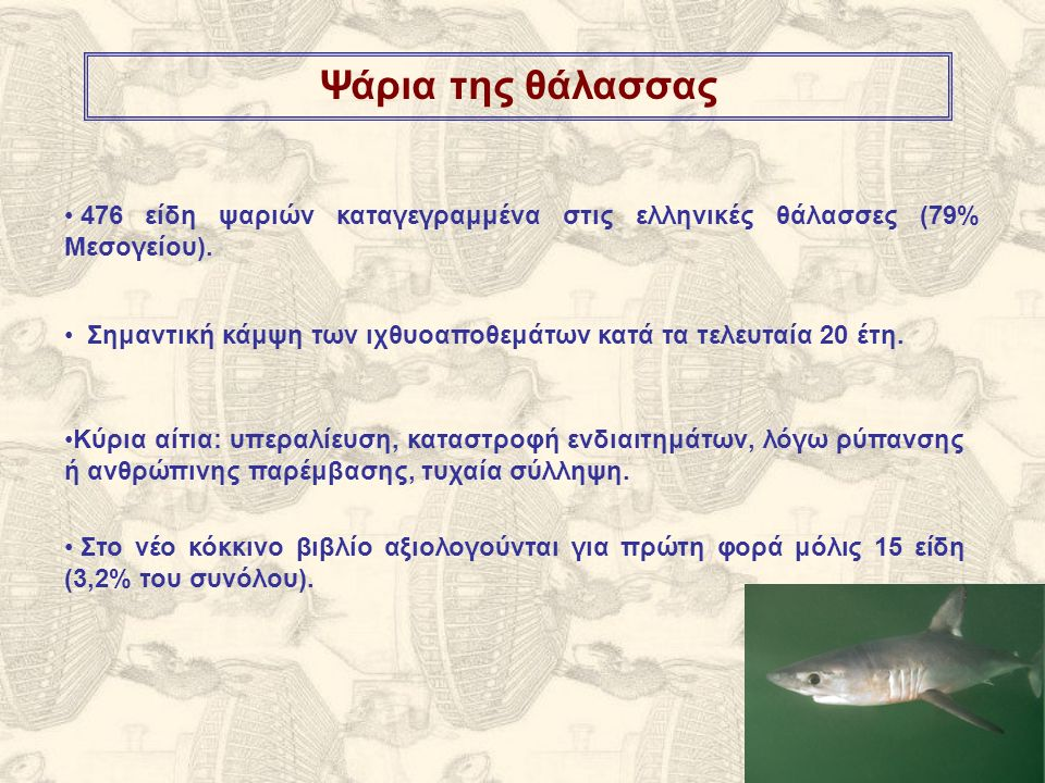 Ψάρια της θάλασσας Κύρια αίτια: υπεραλίευση, καταστροφή ενδιαιτημάτων, λόγω ρύπανσης ή ανθρώπινης παρέμβασης, τυχαία σύλληψη.