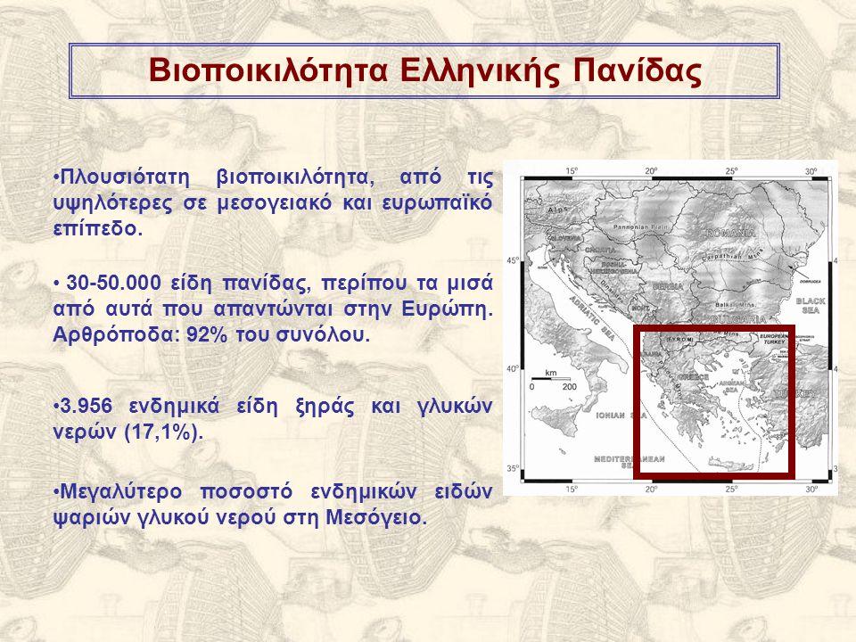 Αμφίβια Mesotriton alpestris – Αλπικός Τρίτωνας – Τρωτό (Κινδυνεύον (VU) στην Πελοπόννησο)