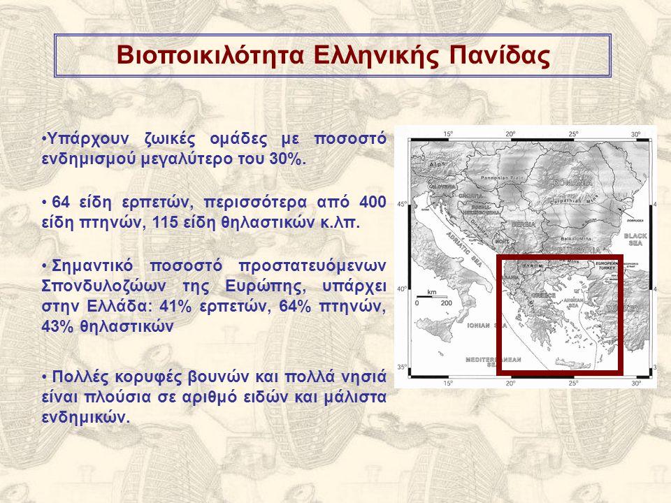 Βιοποικιλότητα Ελληνικής Πανίδας Σημαντικό ποσοστό προστατευόμενων Σπονδυλοζώων της Ευρώπης, υπάρχει στην Ελλάδα: 41% ερπετών, 64% πτηνών, 43% θηλαστικών Πολλές κορυφές βουνών και πολλά νησιά είναι πλούσια σε αριθμό ειδών και μάλιστα ενδημικών.