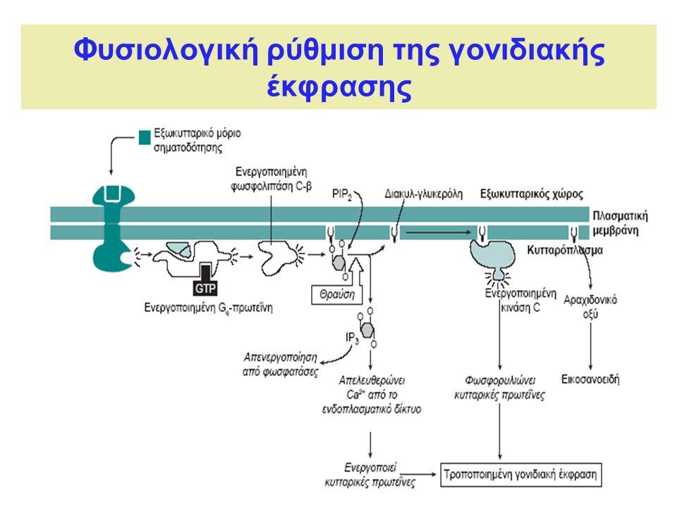 Φυσιολογική ρύθμιση της γονιδιακής έκφρασης