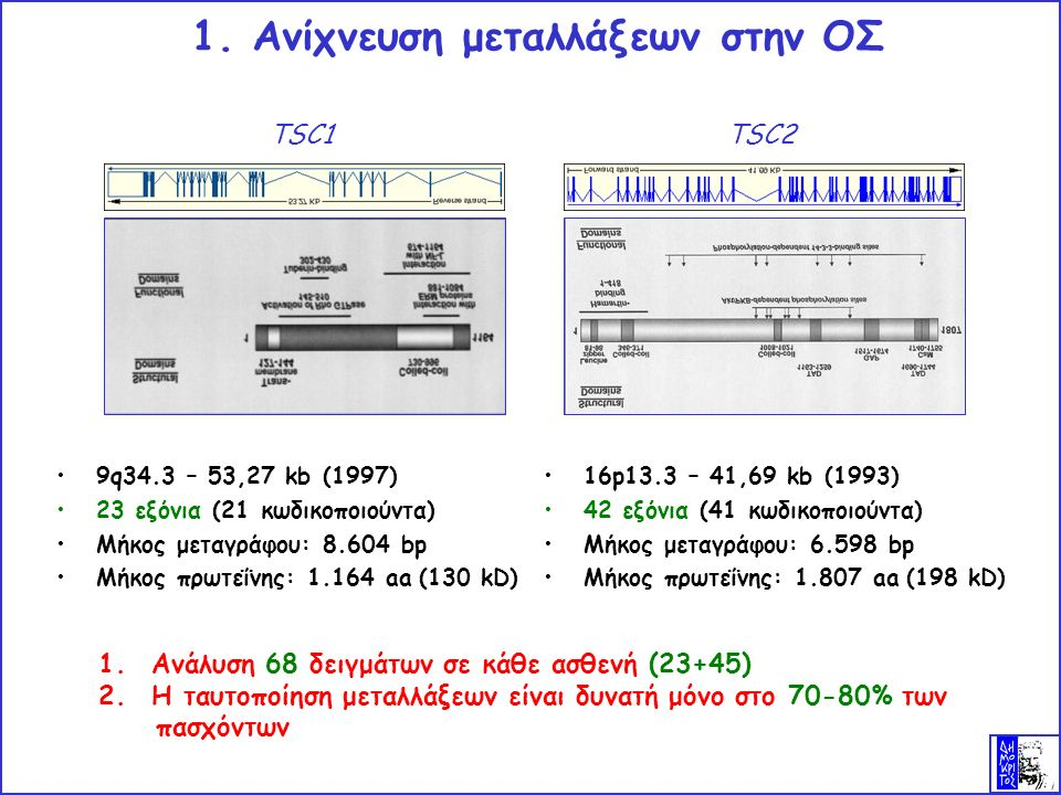 16p13.3 – 41,69 kb (1993) 42 εξόνια (41 κωδικοποιούντα) Μήκος μεταγράφου: 6.598 bp Μήκος πρωτεΐνης: 1.807 aa (198 kD) 1.