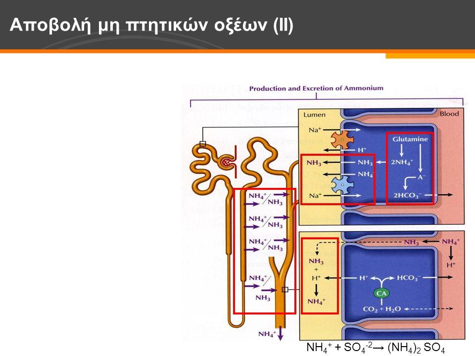 Αποβολή μη πτητικών οξέων (ΙΙ) NH 4 + + SO 4 -2 → (NH 4 ) 2 SO 4