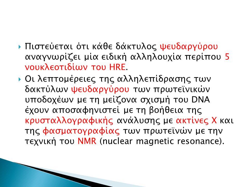  Πιστεύεται ότι κάθε δάκτυλος ψευδαργύρου αναγνωρίζει μία ειδική αλληλουχία περίπου 5 νουκλεοτιδίων του HRE.