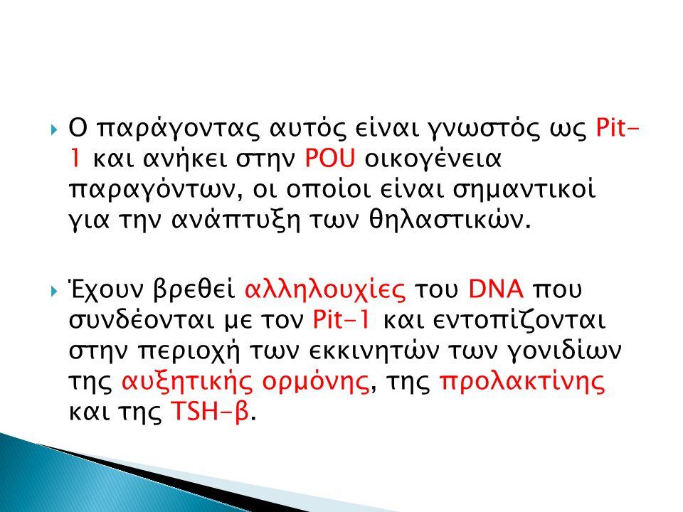  Ο παράγοντας αυτός είναι γνωστός ως Pit- 1 και ανήκει στην POU οικογένεια παραγόντων, οι οποίοι είναι σημαντικοί για την ανάπτυξη των θηλαστικών.