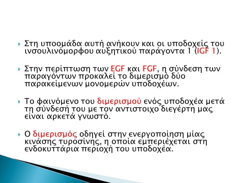  Στη υποομάδα αυτή ανήκουν και οι υποδοχείς του ινσουλινόμορφου αυξητικού παράγοντα 1 (IGF 1).