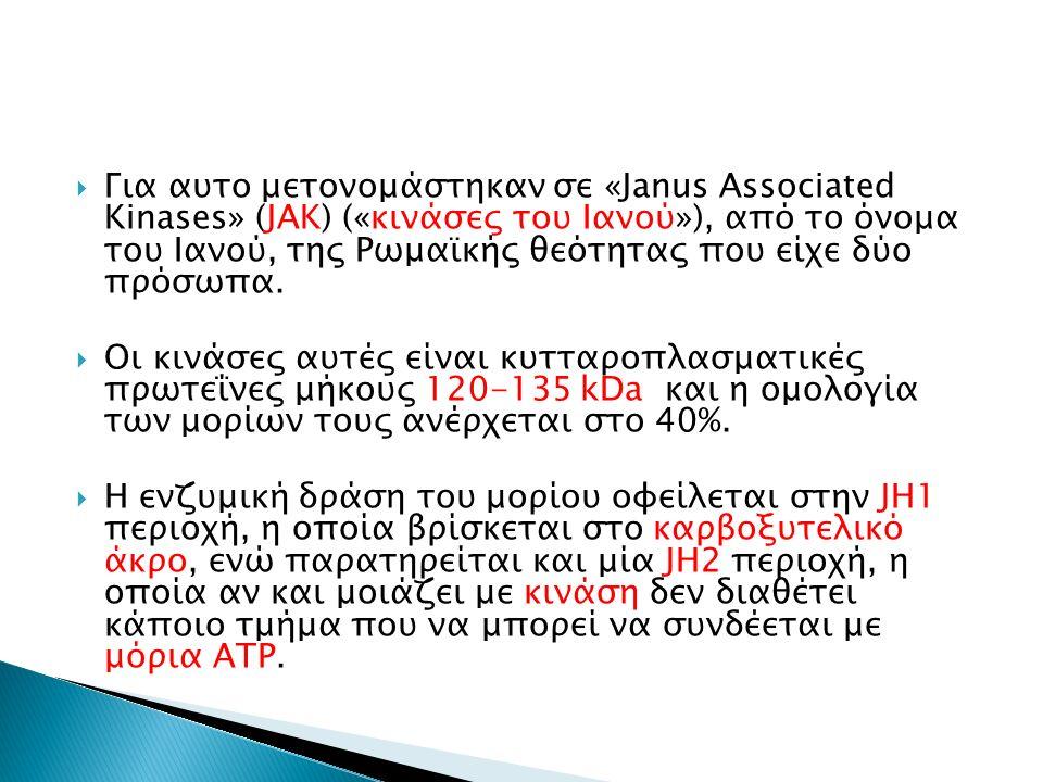  Για αυτο μετονομάστηκαν σε «Janus Associated Kinases» (JAK) («κινάσες του Ιανού»), από το όνομα του Ιανού, της Ρωμαϊκής θεότητας που είχε δύο πρόσωπα.