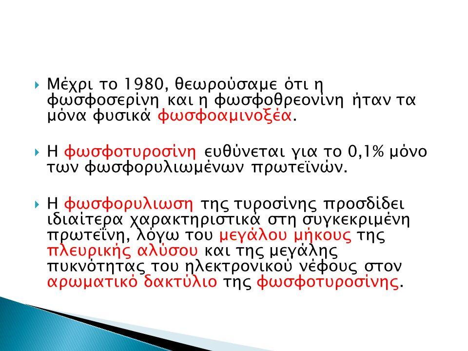  Μέχρι το 1980, θεωρούσαμε ότι η φωσφοσερίνη και η φωσφοθρεονίνη ήταν τα μόνα φυσικά φωσφοαμινοξέα.