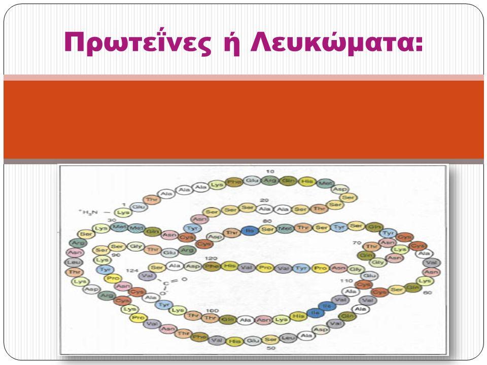 Πρωτεϊνες Το όνομά τους « πρωτεΐνες » προέρχεται από το ρήμα πρωτεύω και υποδηλώνει την πρωταρχική τους σημασία για τη ζωή, αν και σήμερα θεωρείται ότι όλες οι τάξεις των βιομορίων είναι απαραίτητες στον οργανισμό.