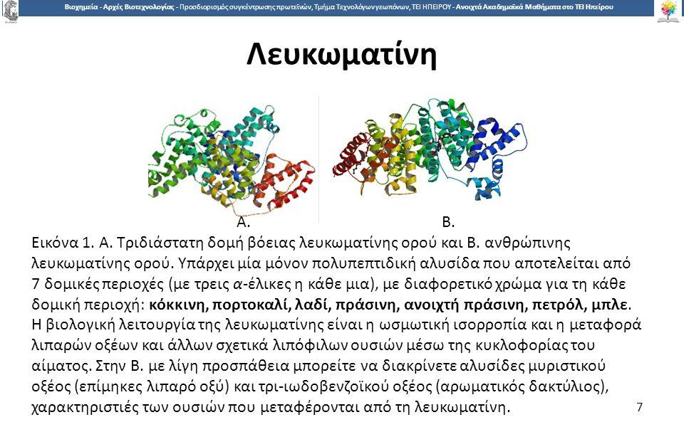7 Βιοχημεία - Αρχές Βιοτεχνολογίας - Προσδιορισμός συγκέντρωσης πρωτεϊνών, Τμήμα Τεχνολόγων γεωπόνων, ΤΕΙ ΗΠΕΙΡΟΥ - Ανοιχτά Ακαδημαϊκά Μαθήματα στο ΤΕΙ Ηπείρου Λευκωματίνη 7 Α.