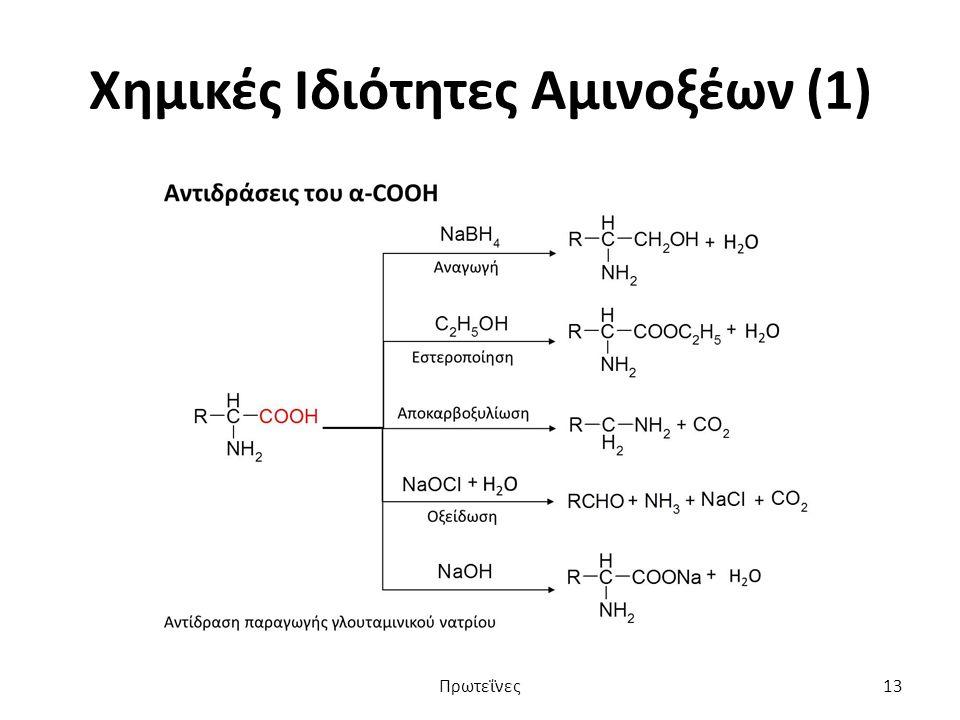Χημικές Ιδιότητες Αμινοξέων (1) Πρωτεΐνες13