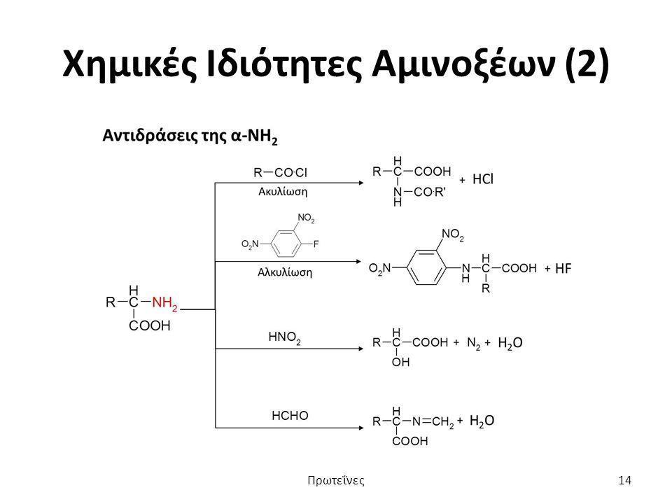 Χημικές Ιδιότητες Αμινοξέων (2) Πρωτεΐνες14