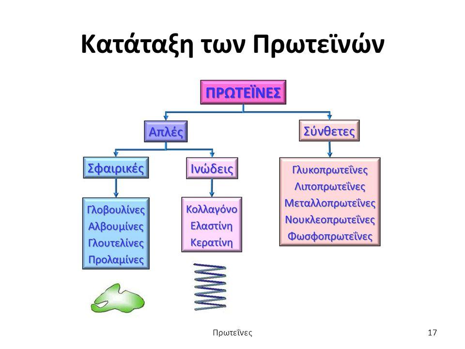 Κατάταξη των Πρωτεϊνών Πρωτεΐνες17