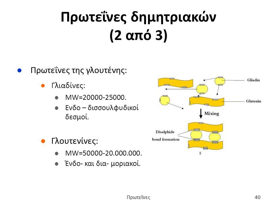 Πρωτεΐνες δημητριακών (2 από 3) ●Πρωτεΐνες της γλουτένης: ●Γλιαδίνες: ●MW=20000-25000.