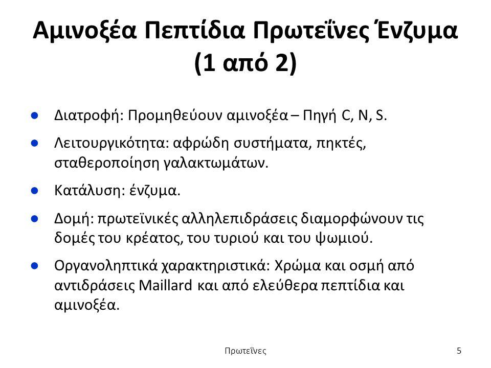 Αμινοξέα Πεπτίδια Πρωτεΐνες Ένζυμα (1 από 2) ●Διατροφή: Προμηθεύουν αμινοξέα – Πηγή C, N, S.