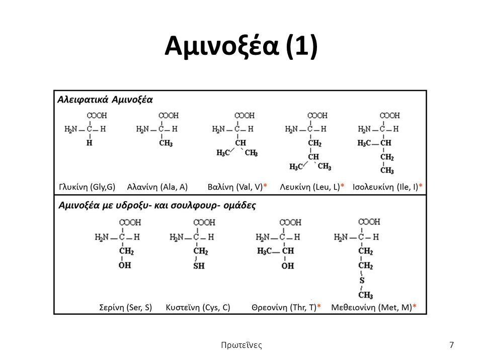 Αμινοξέα (1) Πρωτεΐνες7