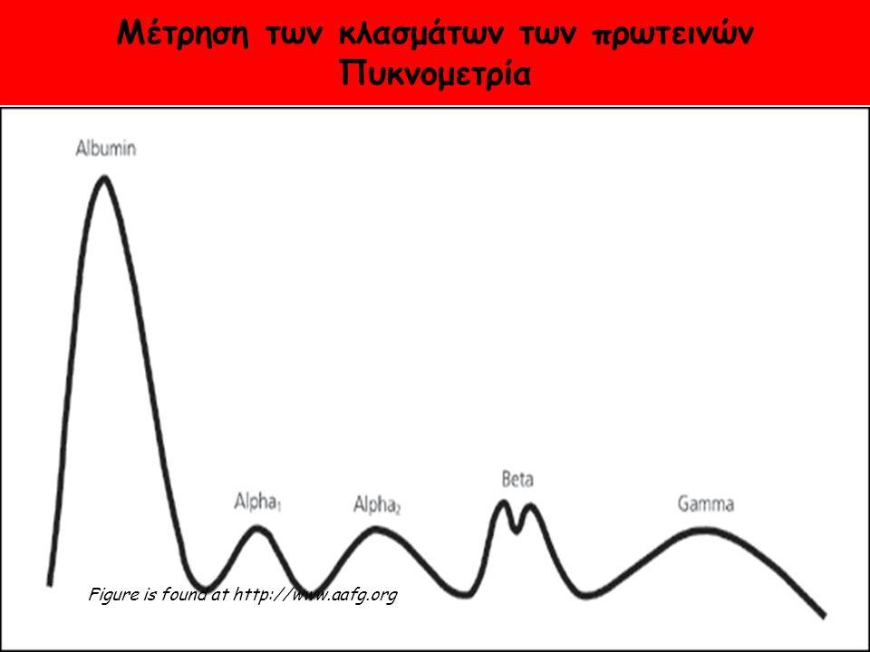 Μέτρηση των κλασμάτων των πρωτεινών Πυκνομετρία Figure is found at http://www.aafg.org