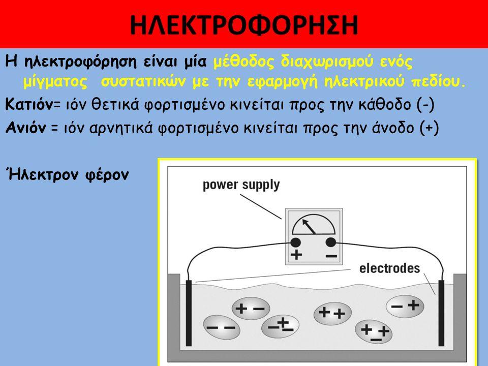 ΗΛΕΚΤΡΟΦΟΡΗΣΗ άλλοτε εμφανίζονται με θετικό φορτίο και άλλοτε εμφανίζονται με αρνητικό φορτίο  Οι πρωτείνες του ορού άλλοτε εμφανίζονται με θετικό φορτίο και άλλοτε εμφανίζονται με αρνητικό φορτίο (ανάλογα με το pH του ρυθμιστικού διαλύματος (buffer) (ανάλογα με το pH του ρυθμιστικού διαλύματος (buffer) μέσα στο οποίο θα κινηθούν) μέσα στο οποίο θα κινηθούν) σε ρΗ αλκαλικό είναι αρνητικά φορτισμένες(-) και όταν εφαρμοσθεί ηλεκτρικό ρεύμα κινούνται προς την άνοδο( +)  Για κάθε πρωτεΐνη υπάρχει μία τιμή pΗ στην οποία η πρωτεΐνη έχει ουδέτερο φορτίο και καλείται ισοηλεκτρικό σημείο (pI) και εξαρτάται από την περιεκτικότητα της πρωτεΐνης σε αριθμό και είδος αμινοξέων Η ταχύτητα επομένως εξαρτάται από το καθαρό φορτίο του μορίου, το σχήμα και το μέγεθος, την τάση του ρεύματος που εφαρμόζεται, το υπόστρωμα, το ρΗ του ρυθμιστικού διαλύματος.