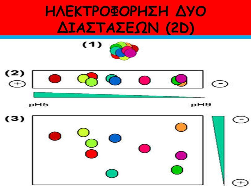 ΗΛΕΚΤΡΟΦΟΡΗΣΗ ΔΥΟ ΔΙΑΣΤΑΣΕΩΝ (2D)