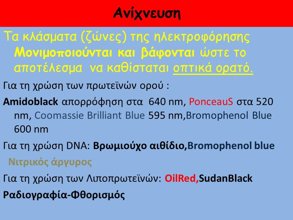 Coomassie Brilliant Blue Ponceau S Νιτρικού Αργύρου Amido Black