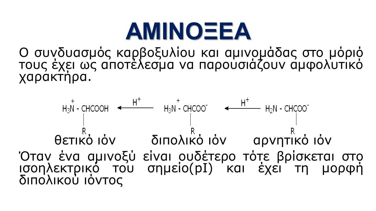 ΑΜΙΝΟΞΕΑ Ο συνδυασμός καρβοξυλίου και αμινομάδας στο μόριό τους έχει ως αποτέλεσμα να παρουσιάζουν αμφολυτικό χαρακτήρα.