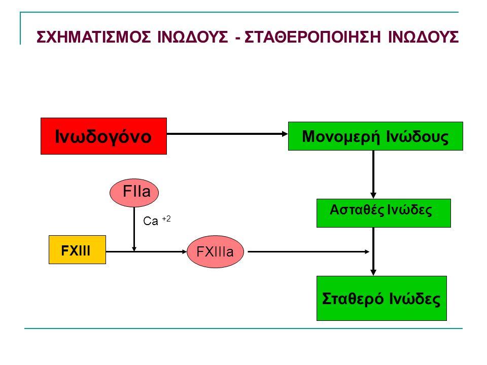 ΣΧΗΜΑΤΙΣΜΟΣ ΙΝΩΔΟΥΣ - ΣΤΑΘΕΡΟΠΟΙΗΣΗ ΙΝΩΔΟΥΣ Ινωδογόνο Μονομερή Ινώδους Σταθερό Ινώδες FXIIIa Ασταθές Ινώδες FXIII FIIa Ca +2
