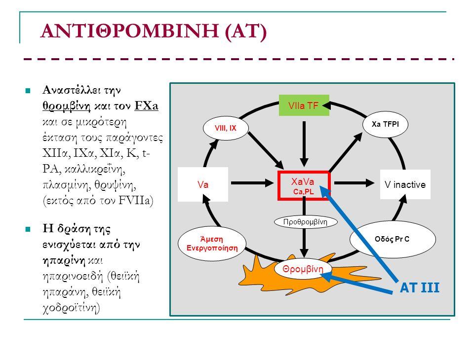 ΑΝΤΙΘΡΟΜΒΙΝΗ (ΑΤ) Αναστέλλει την θρομβίνη και τον FΧa και σε μικρότερη έκταση τους παράγοντες ΧΙΙα, ΙΧα, ΧIα, Κ, t- PA, καλλικρεΐνη, πλασμίνη, θρυψίνη, (εκτός από τον FVIIa) Η δράση της ενισχύεται από την ηπαρίνη και ηπαρινοειδή (θειϊκή ηπαράνη, θειϊκή χοδροϊτίνη) XaVa Ca,PL VIIa TF V inactive Va Άμεση Ενεργοποίηση Οδός Pr C VIII, IX Xa TFPI Προθρομβίνη Θρομβίνη AT III
