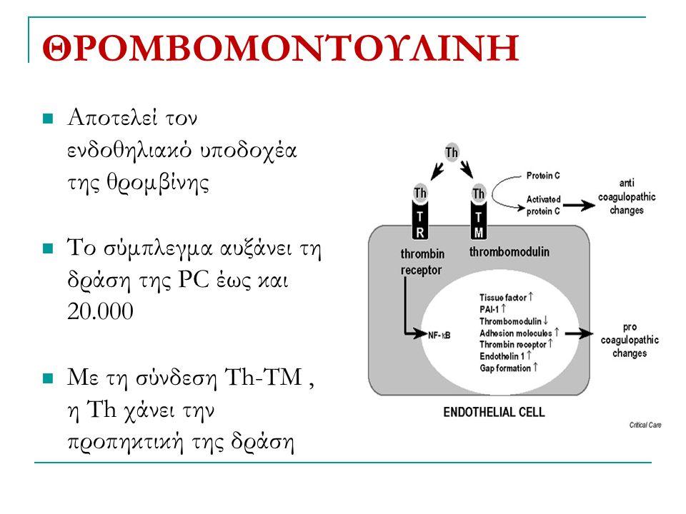 ΘΡΟΜΒΟΜΟΝΤΟΥΛΙΝΗ Αποτελεί τον ενδοθηλιακό υποδοχέα της θρομβίνης Το σύμπλεγμα αυξάνει τη δράση της PC έως και 20.000 Με τη σύνδεση Τh-TM, η Τh χάνει την προπηκτική της δράση