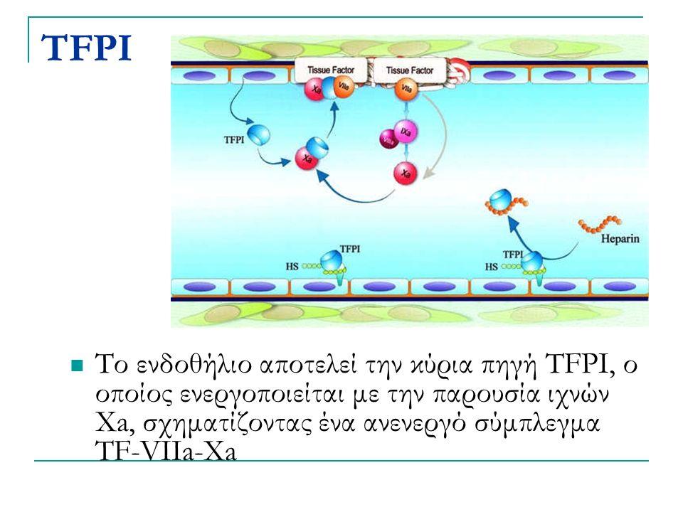 TFPI Το ενδοθήλιο αποτελεί την κύρια πηγή TFPI, ο οποίος ενεργοποιείται με την παρουσία ιχνών Xa, σχηματίζοντας ένα ανενεργό σύμπλεγμα TF-VIIa-Xa