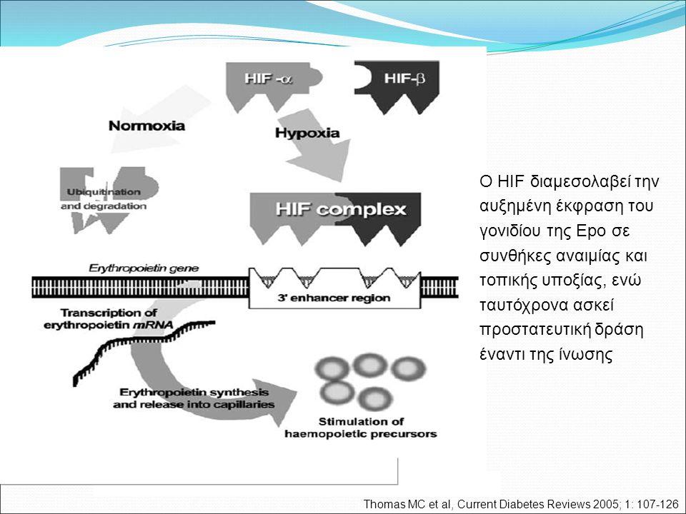 Thomas MC et al, Current Diabetes Reviews 2005; 1: 107-126 Ο HIF διαμεσολαβεί την αυξημένη έκφραση του γονιδίου της Epo σε συνθήκες αναιμίας και τοπικής υποξίας, ενώ ταυτόχρονα ασκεί προστατευτική δράση έναντι της ίνωσης
