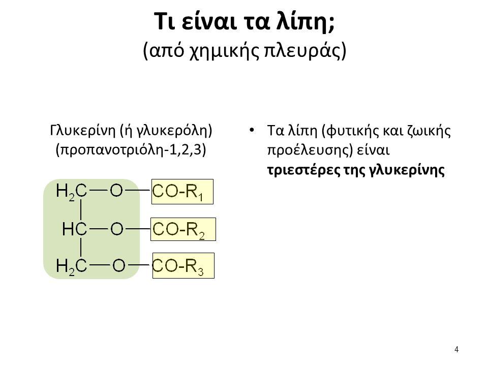 Τι είναι τα λίπη; (από χημικής πλευράς) Τα λίπη (φυτικής και ζωικής προέλευσης) είναι τριεστέρες της γλυκερίνης Γλυκερίνη (ή γλυκερόλη) (προπανοτριόλη-1,2,3) 4