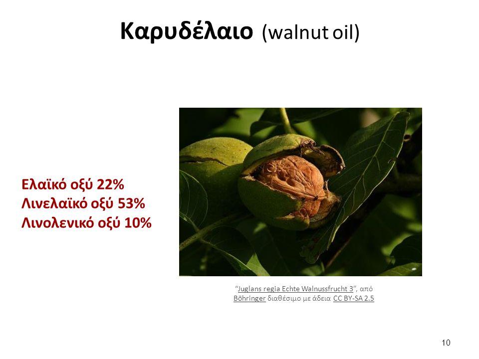 Καρυδέλαιο (walnut oil) Ελαϊκό οξύ 22% Λινελαϊκό οξύ 53% Λινολενικό οξύ 10% Juglans regia Echte Walnussfrucht 3 , από Böhringer διαθέσιμο με άδεια CC BY-SA 2.5Juglans regia Echte Walnussfrucht 3 BöhringerCC BY-SA 2.5 10