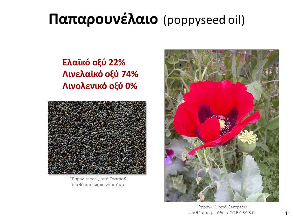 Παπαρουνέλαιο (poppyseed oil) Ελαϊκό οξύ 22% Λινελαϊκό οξύ 74% Λινολενικό οξύ 0% Poppy seeds , από OsamaK διαθέσιμο ως κοινό κτήμαPoppy seedsOsamaK Poppy-1 , από Centpacrr διαθέσιμο με άδεια CC BY-SA 3.0Poppy-1CentpacrrCC BY-SA 3.0 11