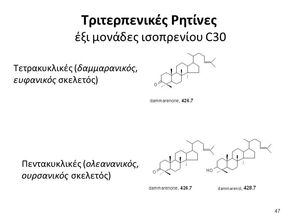Τριτερπενικές Ρητίνες έξι μονάδες ισοπρενίου C30 Τετρακυκλικές (δαμμαρανικός, ευφανικός σκελετός) Πεντακυκλικές (ολεανανικός, ουρσανικός σκελετός) 47