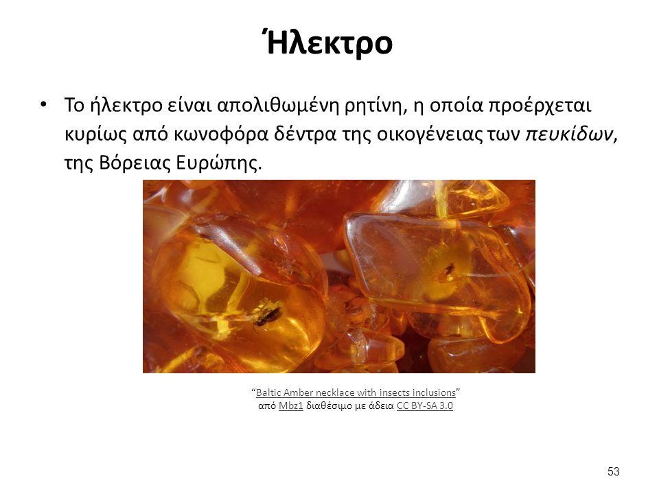 Ήλεκτρο Το ήλεκτρο είναι απολιθωμένη ρητίνη, η οποία προέρχεται κυρίως από κωνοφόρα δέντρα της οικογένειας των πευκίδων, της Βόρειας Ευρώπης.