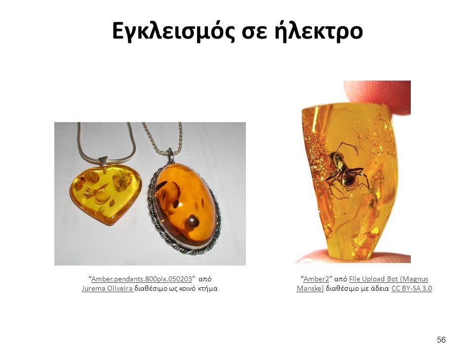 Εγκλεισμός σε ήλεκτρο Amber.pendants.800pix.050203 από Jurema Oliveira διαθέσιμο ως κοινό κτήμαAmber.pendants.800pix.050203 Jurema Oliveira Amber2 από File Upload Bot (Magnus Manske) διαθέσιμο με άδεια CC BY-SA 3.0Amber2File Upload Bot (Magnus Manske)CC BY-SA 3.0 56