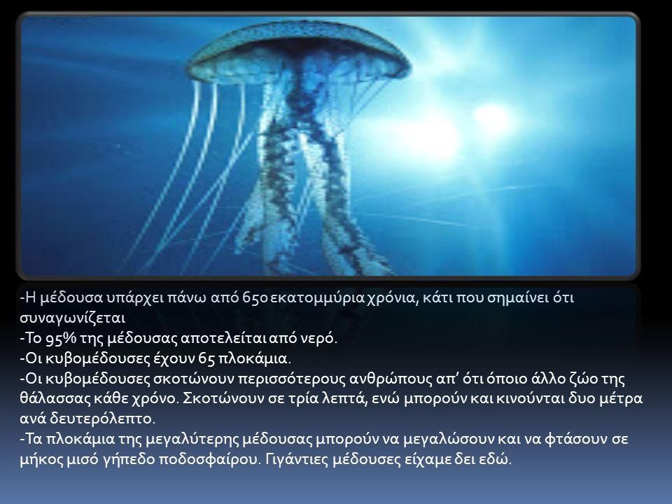-Η μέδουσα υπάρχει πάνω από 650 εκατομμύρια χρόνια, κάτι που σημαίνει ότι συναγωνίζεται -Το 95% της μέδουσας αποτελείται από νερό.