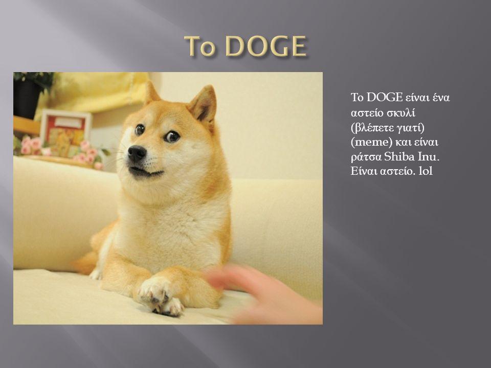Το DOGE είναι ένα αστείο σκυλί ( βλέπετε γιατί ) (meme) και είναι ράτσα Shiba Inu.