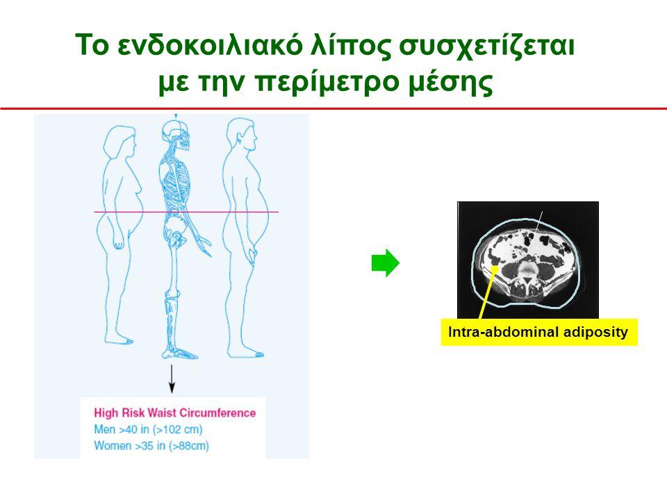 Το ενδοκοιλιακό λίπος συσχετίζεται με την περίμετρο μέσης Després JP et al, 2001; Pouliot MC et al, 2004 Intra-abdominal adiposity IAA (cm 2 ) 102cm άνδρες 88cm γυναίκες