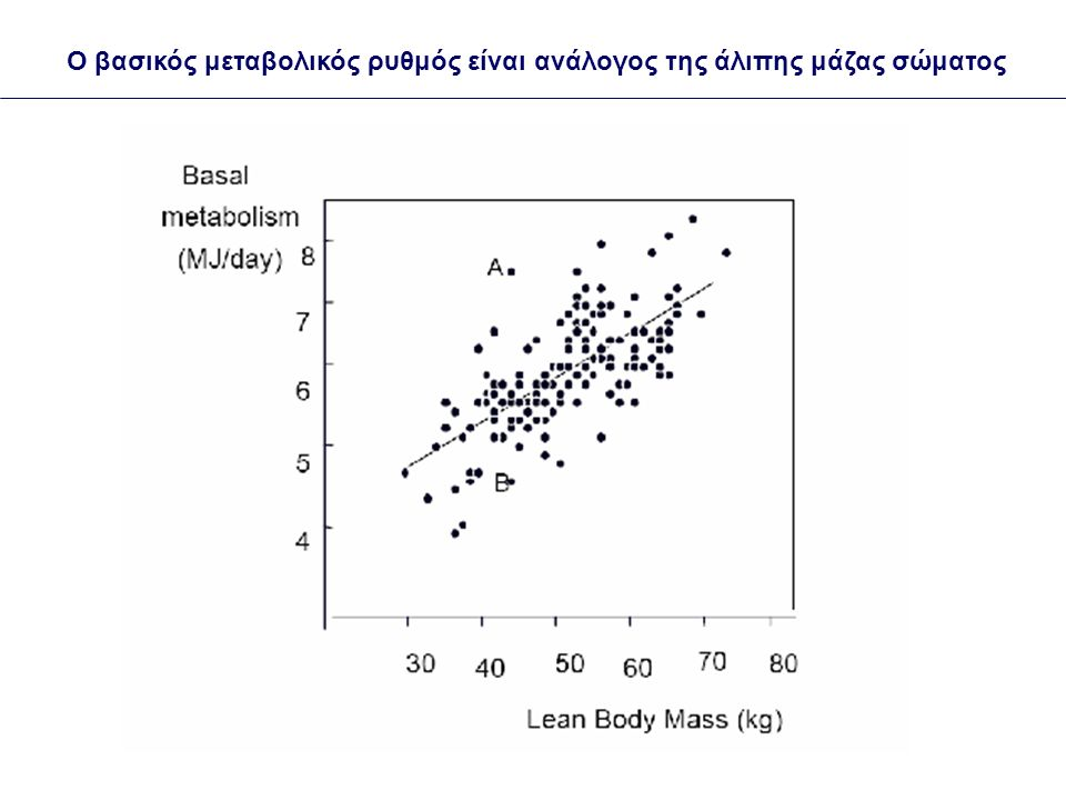 Ο βασικός μεταβολικός ρυθμός είναι ανάλογος της άλιπης μάζας σώματος