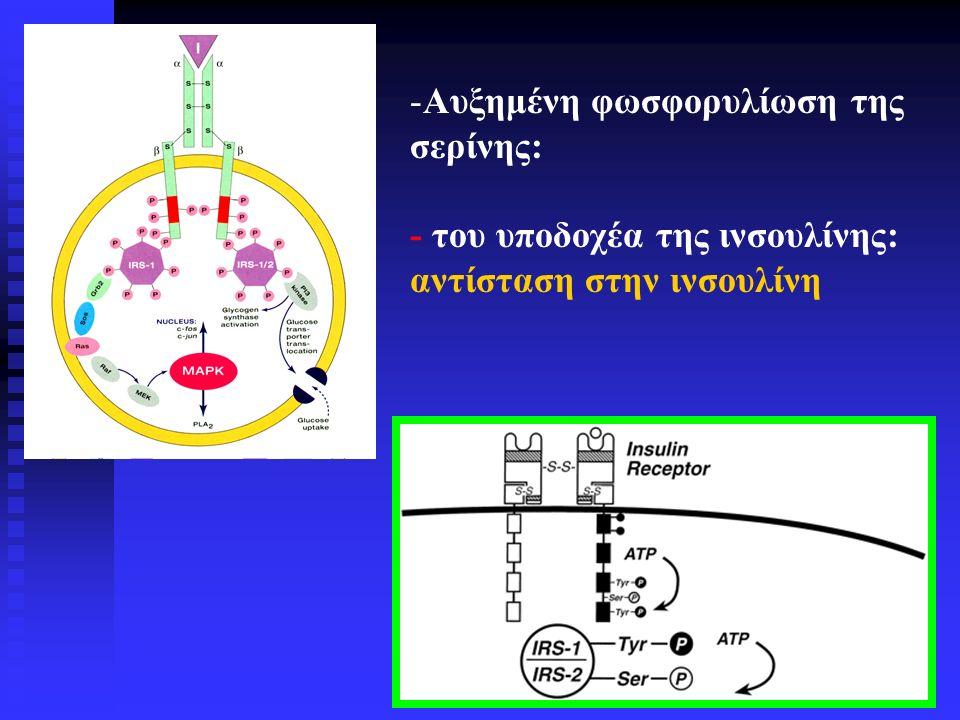 ΦΑΡΜΑΚΟΛΟΓΙΚΑ ΠΡΟΦΙΛ ΠΡΟΓΕΣΤΕΡΟΝΗΣ, ΔΡΟΣΠΙΡΕΝΟΝΗΣ ΚΑΙ ΑΛΛΩΝ ΣΥΝΘΕΤΙΚΩΝ ΠΡΟΓΕΣΤΑΓΟΝΩΝ Προγεστα- γονική δράση Ανδρογονι- κή δράση Αντιανδρο- γονική δράση Αντιαλατο- κορτικοει- δής δράση Γλυκο- κορτικοει -δής δράση Προγεστερόνη+-(+)+- Δροσπιρενόνη+-++- Οξική κυπροτερόνη +-+-(+) Desogestrel (δραστικός μεταβολίτης 3-ketodesogestrel) + (+)(+)(+)(+)--- Dienogest+-+-- Gestodene+ (+)(+)(+)(+)-(+)- Levonorgestrel+ (+)(+)(+)(+)--- Νοργεστιμάτη (κύριος μεταβολίτης levonorgestrel) + (+)(+)(+)(+)---