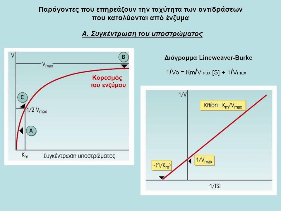 Παράγοντες που επηρεάζουν την ταχύτητα των αντιδράσεων που καταλύονται από ένζυμα Α. Συγκέντρωση του υποστρώματος Κορεσμός του ενζύμου Διάγραμμα Linew