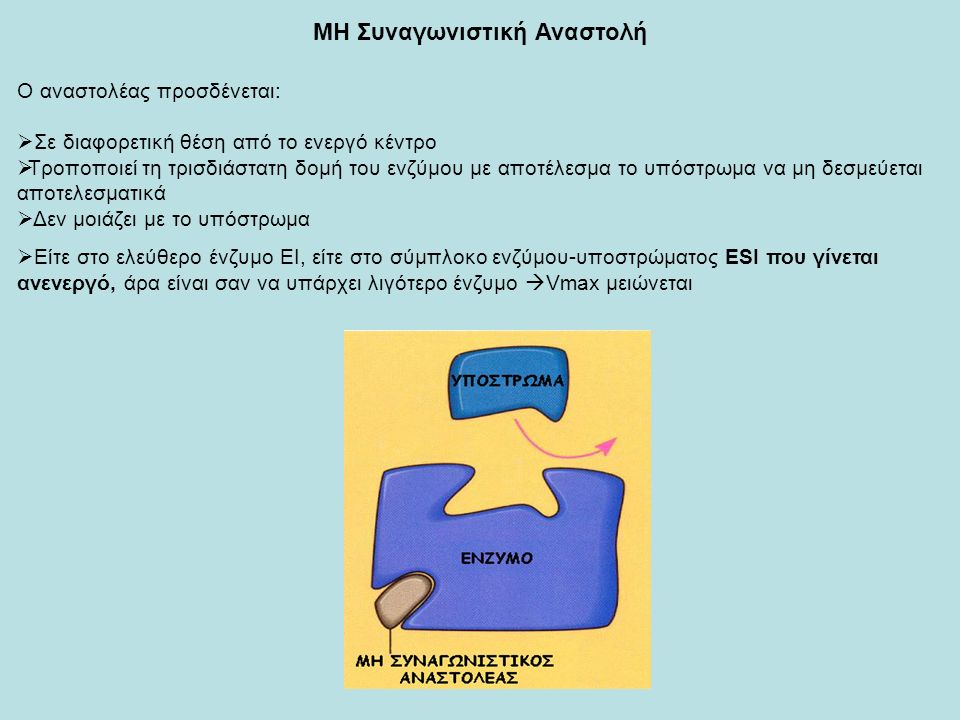 ΜΗ Συναγωνιστική Αναστολή Ο αναστολέας προσδένεται:  Σε διαφορετική θέση από το ενεργό κέντρο  Τροποποιεί τη τρισδιάστατη δομή του ενζύμου με αποτέλεσμα το υπόστρωμα να μη δεσμεύεται αποτελεσματικά  Δεν μοιάζει με το υπόστρωμα  Είτε στο ελεύθερο ένζυμο ΕΙ, είτε στο σύμπλοκο ενζύμου-υποστρώματος ΕSI που γίνεται ανενεργό, άρα είναι σαν να υπάρχει λιγότερο ένζυμο  Vmax μειώνεται